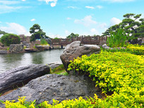 唐代风格园林景观摄影