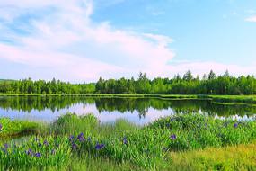 大兴安岭森林湖泊