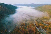 航拍长白山秋季林海晨雾