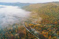 吉林长白山林区秋季晨雾迷漫