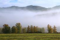 山林金秋晨雾风景