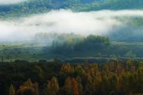 山林秋景晨雾
