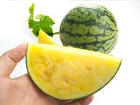 夏日吃黄心西瓜