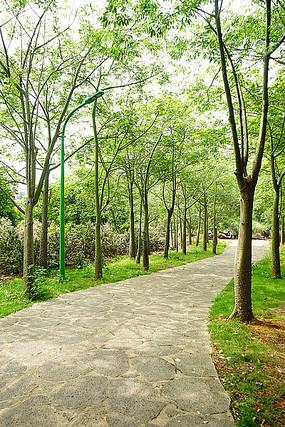 公园石铺路