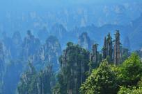 湖南张家界群峰景观