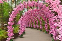 四川彭州丹景山花卉廊架拱门