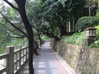 新会圭峰山玉湖散步过道
