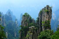 张家界石峰景观