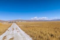冬天草原风光