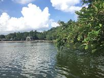 新会玉湖美景