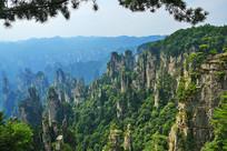张家界国家森林公园石峰景观