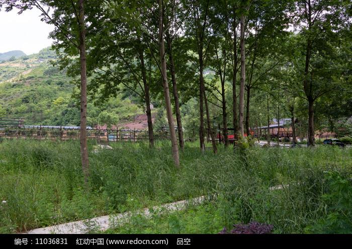 重庆巫山_重庆巫山龙潭溪度假村绿色环境高清图片下载_红动网
