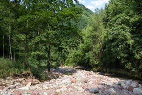 重庆巫山龙潭溪河滩和森林