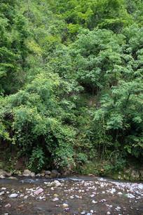 重庆巫山骡坪龙潭溪幽静的河谷