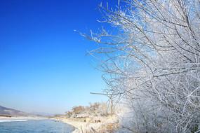 雾凇岛蓝天雪景