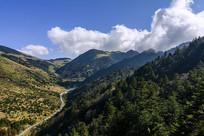 神农架峡谷
