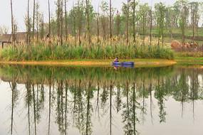 成都白鹭湾湿地-白鹭湖小船