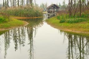 成都白鹭湾湿地公园