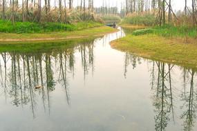 成都白鹭湾湿地公园-白鹭湖