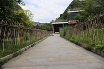 竹子边的小路