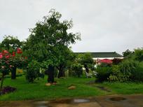 果园农家小院