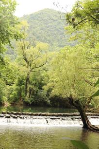 百步桥河流