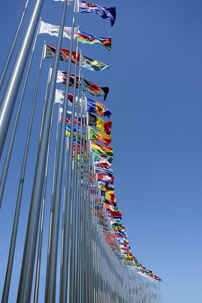 国际会议旗帜飘扬
