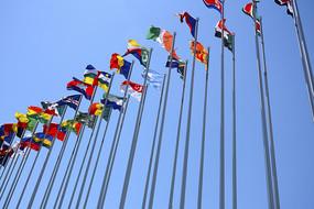 国际盛会旗帜