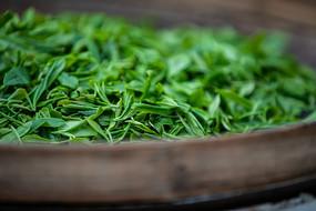箩筐中的新鲜茶叶