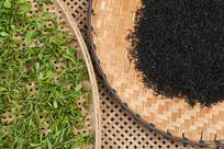 新鲜茶叶和成品红茶