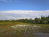 稻田恬静村庄