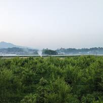 田间大棚远景