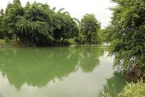 清澈湖水倒影