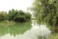 水边的风景