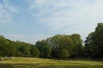 习家池园林公园