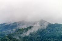 大山森林云雾