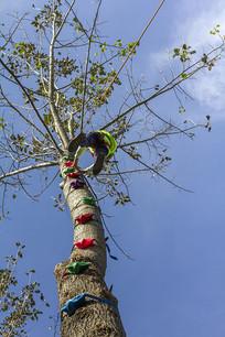 户外运动儿童攀爬树干