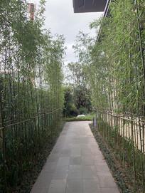 园林步道设计