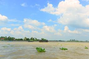 越南九龙江-江心岛屿龙岛风光