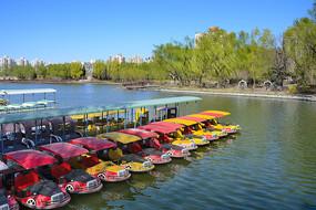 北京春天游船