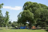 草坪露营帐篷