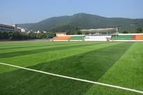 绿色足球场