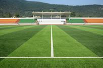 足球场与看台