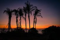 清晨的海边日出