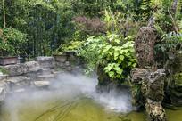 假山水池竹林园林景观