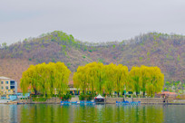 上河口河岸树木建筑与群山峰