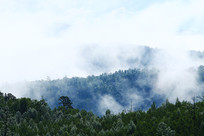大兴安岭森林云雾