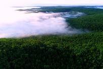 大兴安岭原始森林晨雾缭绕