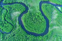 航拍绿色草甸丛林河湾风景