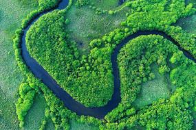 呼伦贝尔扎敦河湿地蓝色河流